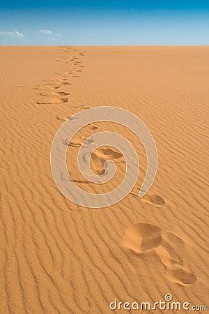 Footprints at Coral Pink Sand Dunes State Park, Ut