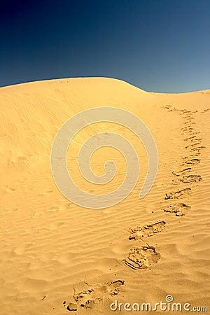 Footprints on the desert