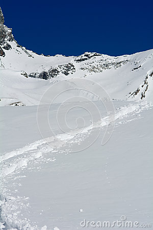 Footprints in the fresh snow