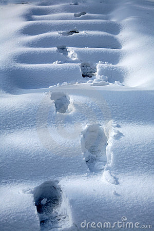 Free Footprints In Snow Royalty Free Stock Image - 11990726