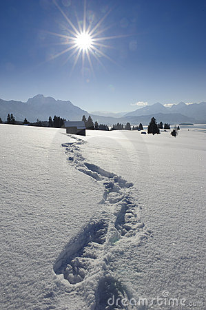 Free Footprints In Snow Royalty Free Stock Images - 18355819