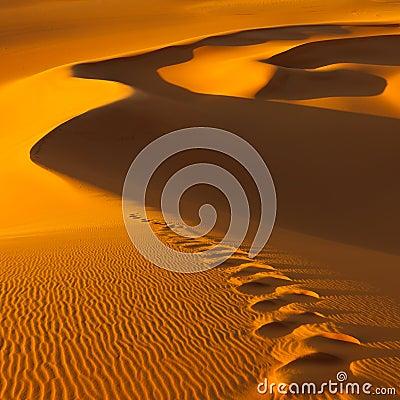 Free Footprints In The Sand Dunes - Sahara, Libya Royalty Free Stock Images - 19654369