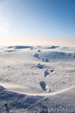 Free Footprints In The Snow Royalty Free Stock Photo - 16732715