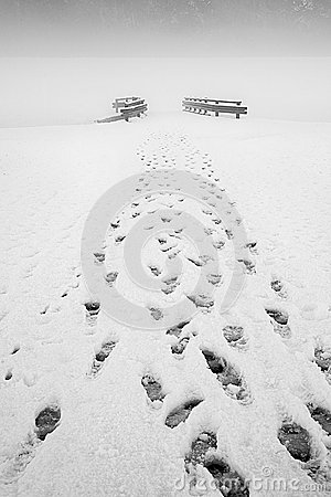Free Footprints In The Snow Royalty Free Stock Photo - 49772095
