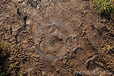 Footprints in mud