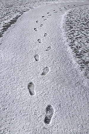 Footprints in new snow