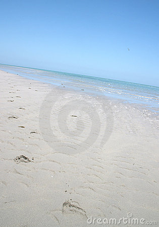 Free Footprints On A Beach Stock Photography - 101782