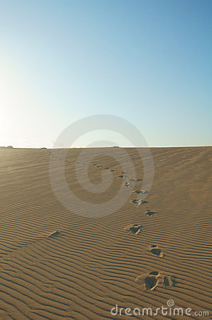 Footprints in sand dunes