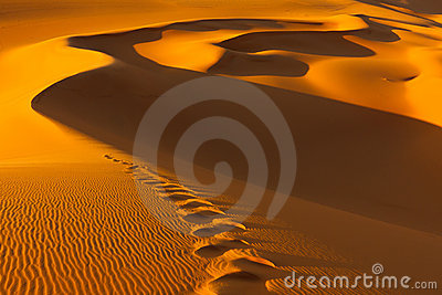 Footprints - Sand Dunes - Murzuq Desert, Sahara