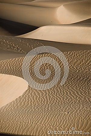 Footprints in th esand