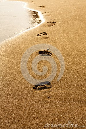 Footprints in wet sand of beach