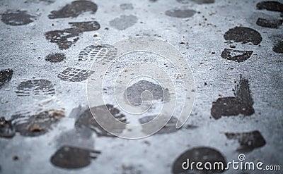 Footsteps in fresh wet snow