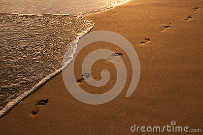Footsteps in the Golden Sand on the Beach