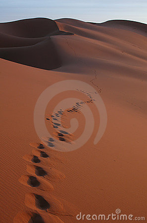 Free Footsteps In The Sahara Desert Stock Image - 360651