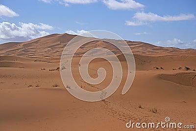Footsteps through the Sahara