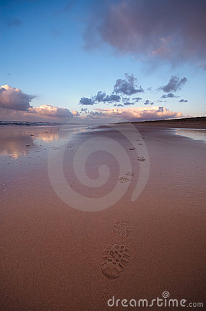 Footsteps In The Sand Royalty Free Stock Photos - Image: 1460018