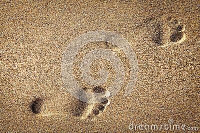 Footsteps in sandy
