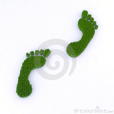 Footsteps walking on grass