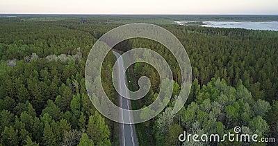 Forêt conifére boréale de vue aérienne avec la route de taches de bouleau clips vidéos