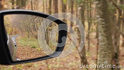 Forêt d'automne réfléchie dans le miroir d'une voiture banque de vidéos