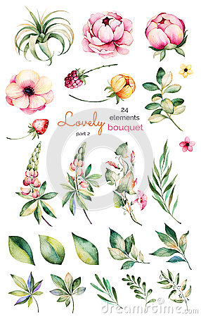 Free Foral Collection With Flower,peonies,leaves,branches,lupin,air Plant,field Bindweed,strawberry And More. Royalty Free Stock Photography - 74304687