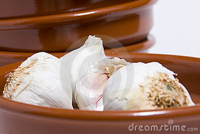 Forefront of garlic