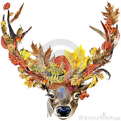 Free Forest Animal Roe Deer Autumn Nature Colorful Leaves Background , Fruit, Berries, Mushrooms, Yellow Leaves, Rose Hips On Black Bac Royalty Free Stock Photos - 60516718