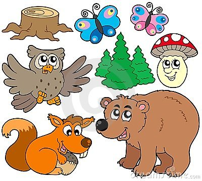 Forest animals collection 3
