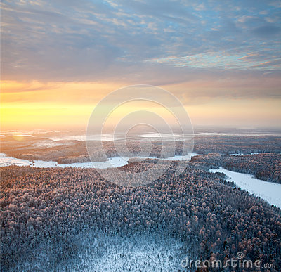 Forest area with beautiful sunset in winter