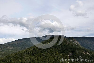 Forest Covered Mountain Landscape Free Public Domain Cc0 Image