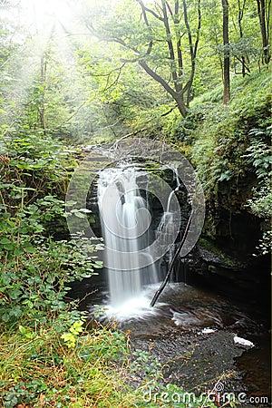 Free Forest Falls, United Kingdom, England Stock Photo - 37875450