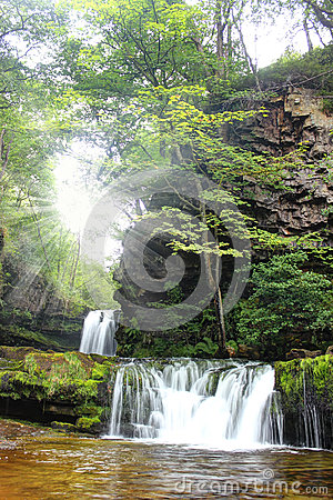 Free Forest Falls, United Kingdom, England Stock Image - 37875821