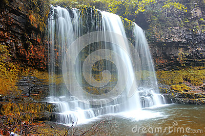 Forest Falls, United Kingdom, England