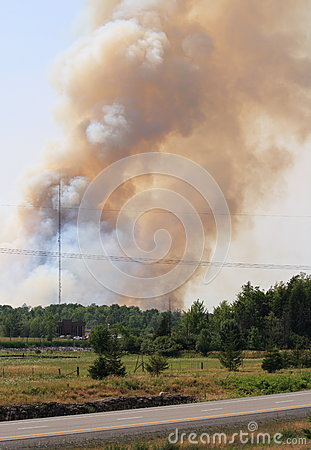 Forest Fire in Ottawa Editorial Photography