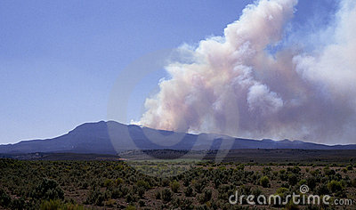 Forest fire in Utah