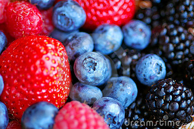 Forest fruits - berries
