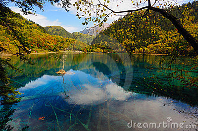 Forest and lake landscape of China jiuzhaigou