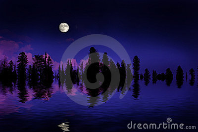 Forest Moonrise