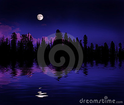 Forest Moonrise Reflection