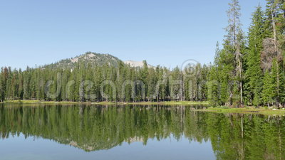 Forest and Mountain Peak at Lassen Volcanic National Park stock video footage