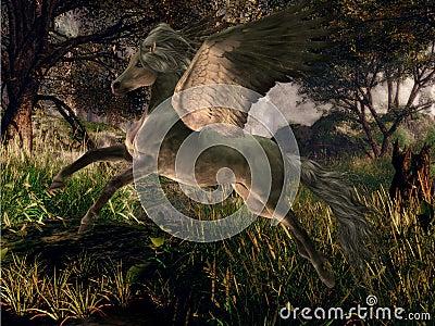 Forest Pegasus