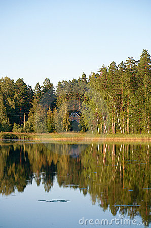 Forest reflected on lake