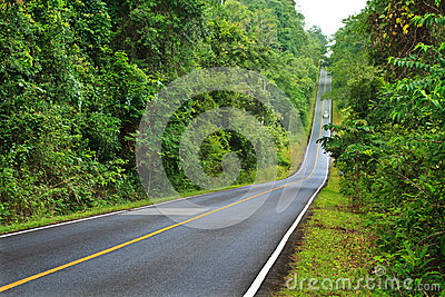 Forest road at Khaoyai National Park