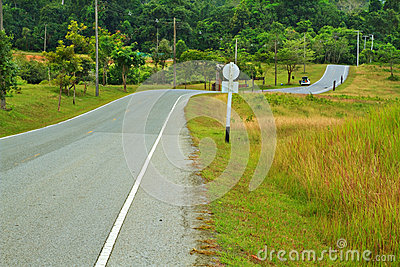Forest road at Khaoyai National Park