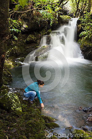 Free Forest Stream Royalty Free Stock Photo - 27426915
