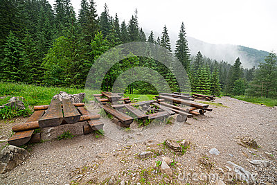 Forest trail in Tatra mountains