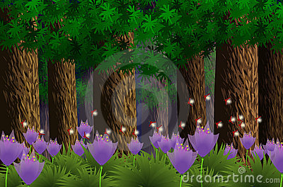 Forest under the moonlight-illustrator