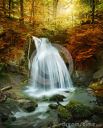 Free Forest Waterfall Stock Photos - 37798753