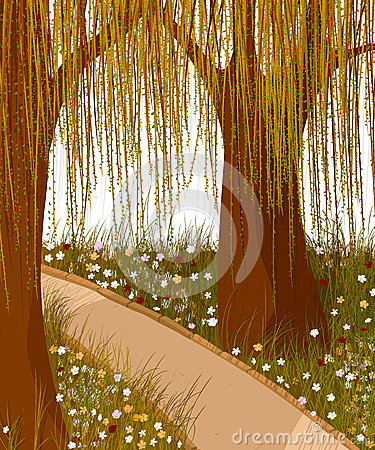 Fondo della foresta del salice