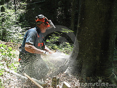 Forestry worker with a chainsaw